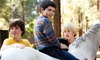 Friendly Pony Parties and Pastorino Farms - Half Moon Bay: Pony Ridesor Petting ZooPartyat Pastorino Farms (Up to57%Off). FiveOptions Available.