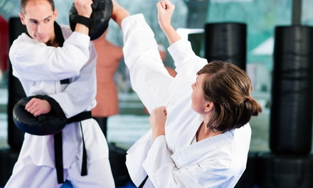 One Month of Unlimited or Twice-Weekly Krav Maga or Kickboxing at Maumee Valley Martial Arts (Up to 73% Off )