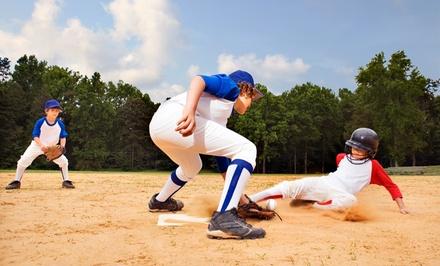 $149 for a Four-Day Instructional Baseball and Softball Camp at Teels Baseball & Softball ($295 Value)