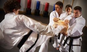 World Seido Karate: 5 or 10 Adult or Children's Karate Classes at World Seido Karate (Up to 76% Off)