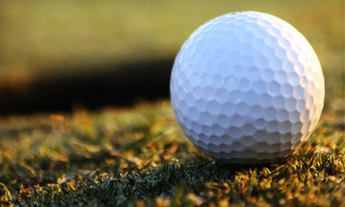 Best Local Golf LLC - Dallas: $29 for a Best Local Golf Membership Discount Card ($69 Value)