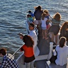 Up to 52% Off Dolphin-Watching Buffet Cruise