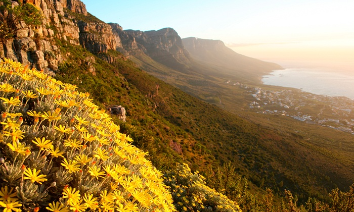South Africa Tour With Airfare And Safari From Gate 1