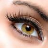 Up to 53% Off Eyelash Extensions at Studio Lash