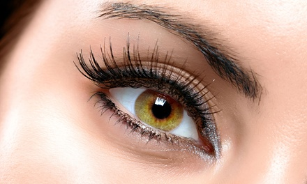Full Set of Mink Eyelash Extensions with Optional Touchup Refill at Studio Lash (Up to 53% Off)