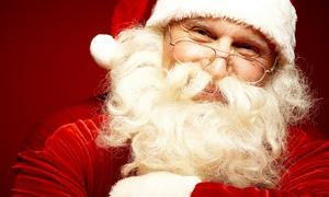 Santa's tree Farm and Village: Holiday Experience for Two or Four at Santa's Tree Farm and Village (Up to 53% Off)