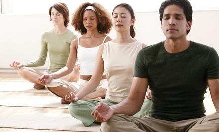 $35 for Any 10 Classes at Lotus Garden Meditation Center ($90 Value)