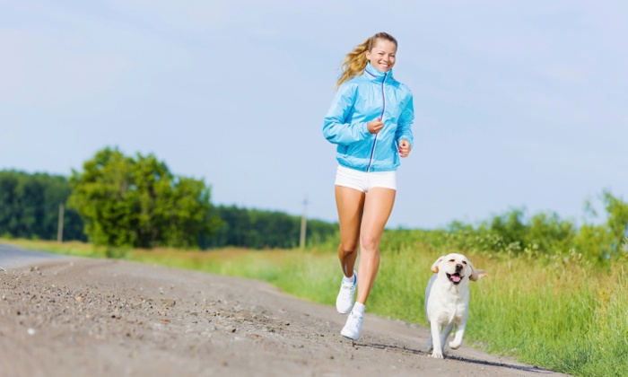 Alpha Pack Fitness - Multiple Locations: 5 or 10 Pet-Friendly Boot-Camp Classes at Alpha Pack Fitness (Up to 72% Off)