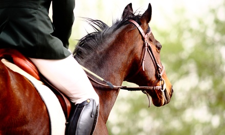 One Private English-Riding Lesson for One or Two at Fire Fly Stables (Up to 41% Off)