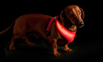 Super Strong LED Dog Harnesses
