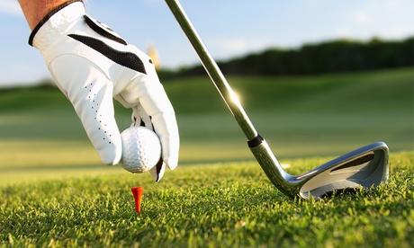 Clases grupales de golf nivel iniciación o perfeccionamiento para 1 o 2 personas desde 29,95 €
