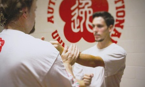 Moy Yat Ving Tsun Kung Fu Of Omaha: $25 for $100 Worth of Martial-Arts Lessons — Moy Yat Ving Tsun (Wing Chun) Kung Fu