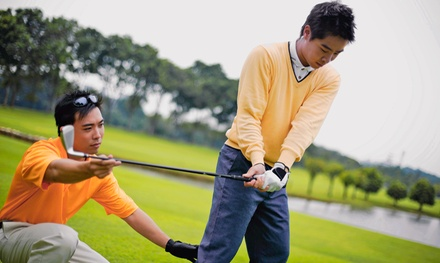 One Swing Lesson or Three Training Sessions at Vineyard Valley Golf Club (Up to 47% Off)