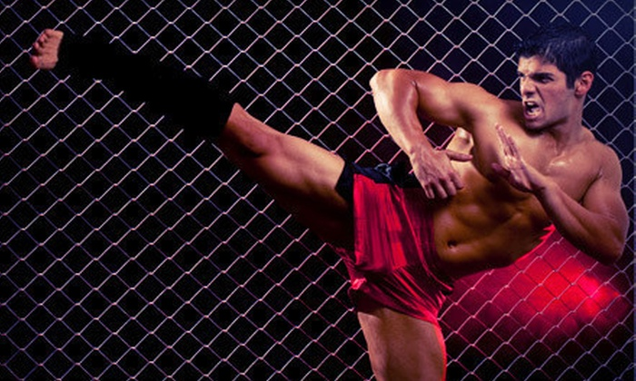 Empire Academy - Culver: One-Month Grappling, Striking, or Combo MMA Package at Empire Academy (Up to 77% Off)