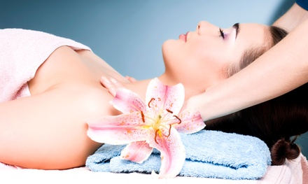 Custom Facial, Skin-Rejuvenation Facial, or Max Facial with Microdermabrasion (Up to 51% Off)