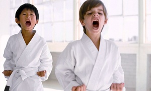 Lincoln Fit1: $54 for One Month of Superkids Children's Karate Classes at Lincoln Fit1 ($99 Value)