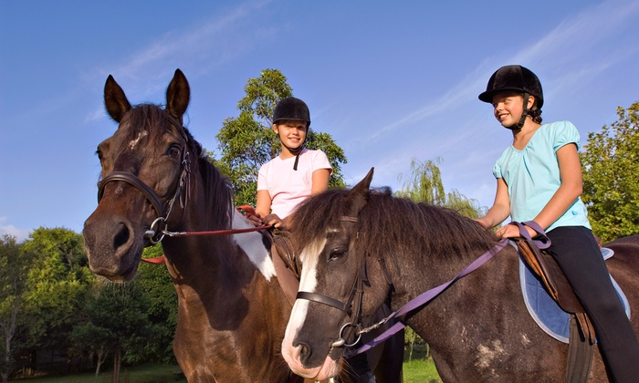Freedom Equestrian - Victoria: Four Group Horseback-Riding Lessons with Private Lesson or Eight Lessons at Freedom Equestrian (Up to 58% Off)
