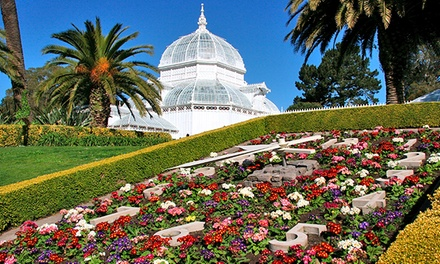 One-Year Membership to the Conservatory of Flowers (40% Off). Five Options Available.