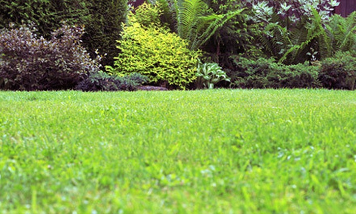 Perkins Lawn Services - Hendersonville: Four or Eight Weekly Lawn-Care Sessions for Yards Up to 7,500 Square Feet from Perkins Lawn Services (Up to 68% Off)