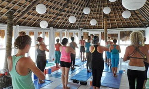 Bodhi Yoga: $48 for One Month of Unlimited Classes at Bodhi Yoga ($150 Value)