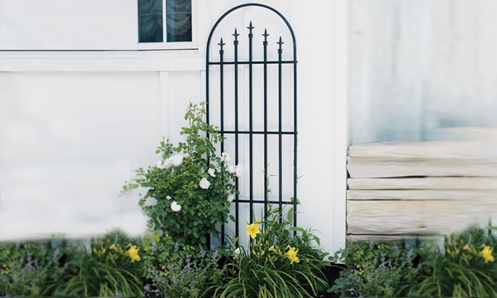 Delicieux 6 Ft. Black Steel Garden Finial Trellis ...