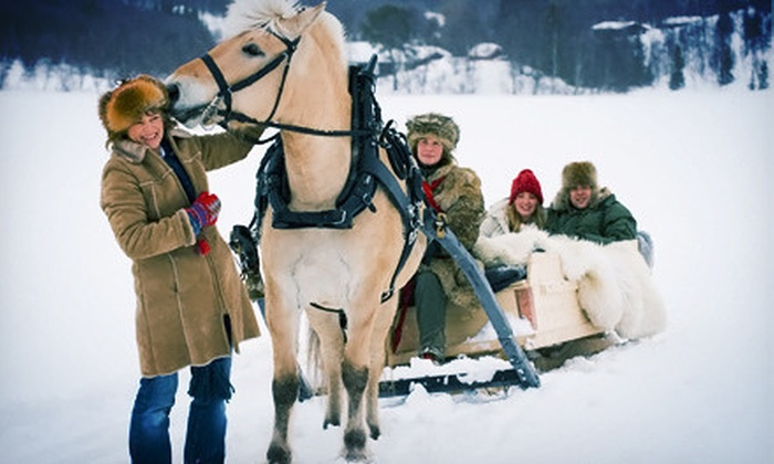 Northville Horse and Recreation - Northville: Sleigh Ride with Coffee and Hot Chocolate at Northville Horse and Recreation (Up to 51% Off). Four Options Available.