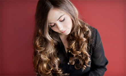 Haircut and Style with Full Color or Partial Highlights at Salon Debonaire (Up to 51% Off)
