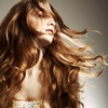 Cut, Condition and Blow Dry £17.50