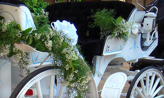 Oklahoma Premier Carriage Company - Oklahoma Premier Carriage Company: Horse-Drawn Carriage Ride for Two through Bricktown or Hotel District from Oklahoma Premier Carriage Company (Half Off)