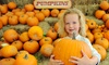 Up to 52% Off Fall Festival at Harvest Farm