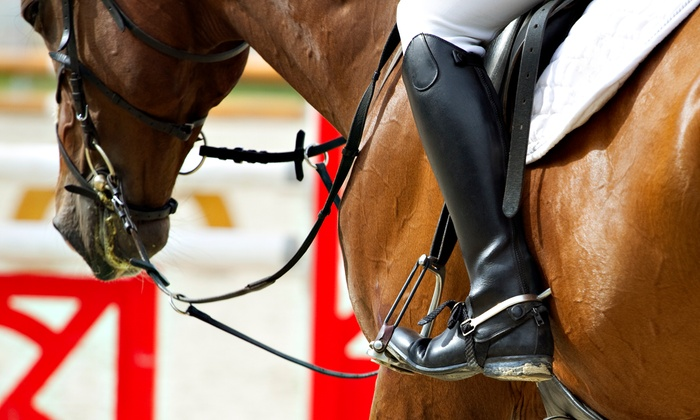 New York Dressage - Warwick: $100 for Three Private One-Hour Horseback-Riding Lessons at New York Dressage ($300 Value)