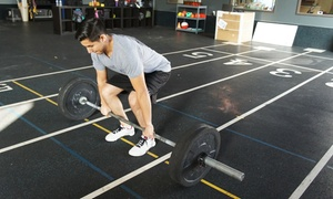Tribe Functional Fitness: CrossFit Classes at Tribe Functional Fitness (Up to 72% Off). Three Options Available.