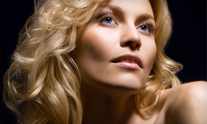 Envy Hair Studio - Vancouver: Haircut, Conditioning Treatment, and Blow-Dry with Option for Partial Highlights at Envy Hair Studio (Up to 79% Off)