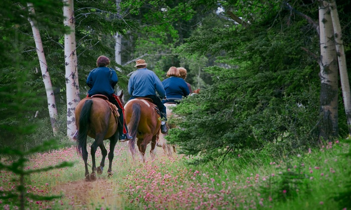 Chattahoochee Stables - Sautee Nacoochee: River Trail Ride for Two or Four at Chattahoochee Stables (Half Off)