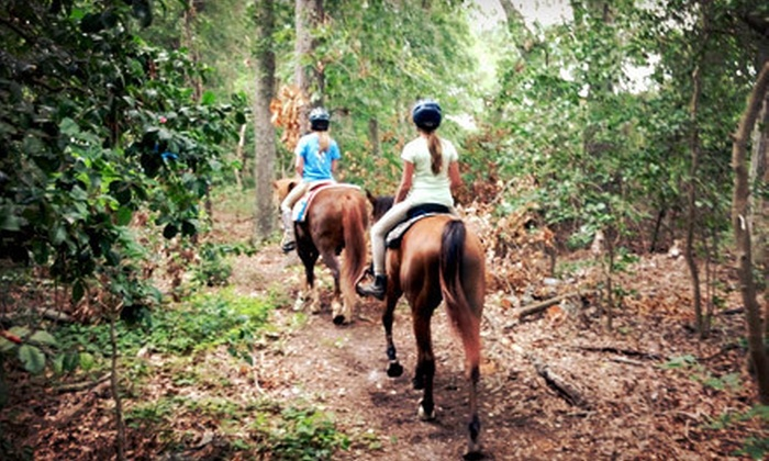 Pfeiffer Training Stables - 2: $40 for a 60-Minute Horseback Trail Ride for Two from Pfeiffer Riding Stables ($80 Value)