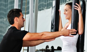 Totem Fitness: Four or Eight Personal-Training Sessions at Totem Fitness (Up to 69% Off)
