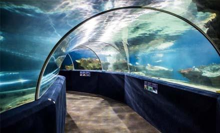 Cleveland aquarium coupons
