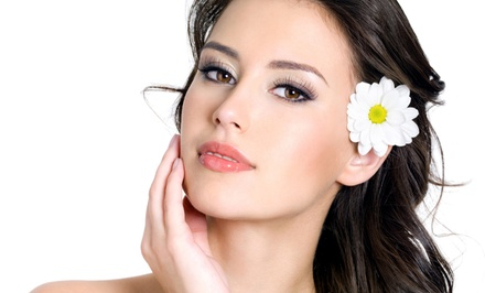 One or Two Microcurrent Lift Facials at Skin Care by Michele at Studio 7 (53% Off)