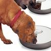 $34.99 for Lentek 6-Day Automatic Pet Feeder