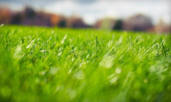 Arkansas Elite Turf - Little Rock: Basic, Enhanced, or Premium Lawn-Care Packages from Arkansas Elite Turf (Up to 67% Off)