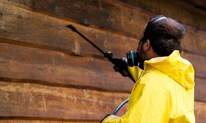 Parker's Pressure Washing - Raleigh / Durham: $120 for the Pressure Washing of a Two-Story Home from Parker's Pressure Washing ($250 Value)
