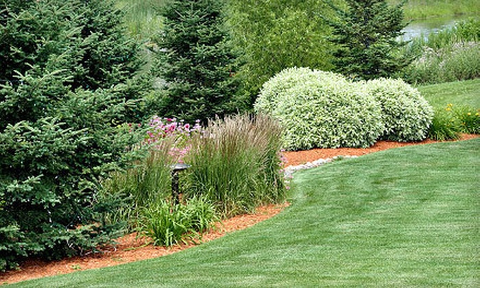 Prograss Landscape Care Service In Portland Oregon Groupon