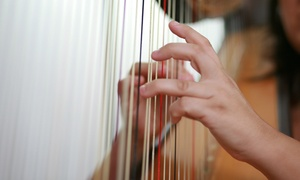 The Schwartz School of Music: One or Three 60-Minute Harp Workshops at The Schwartz School of Music (48% Off)