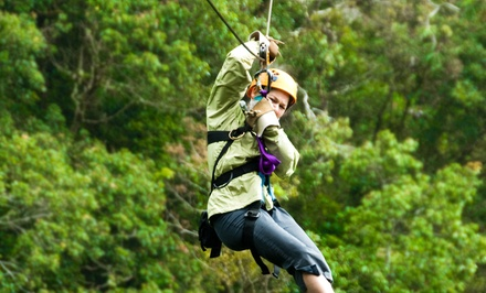$39 for a Two-Hour Zipline Tour from Big Woods Zip Line & Canopy Tours ($65 Value)
