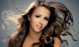 Tralise Salon: $42 for a Haircut and Partial Highlights at Tralise Salon ($87 Value)