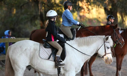 60-Minute Guided Horseback Trail Ride for Two or Four at Stono River Riding Academy (Up to 50% Off)