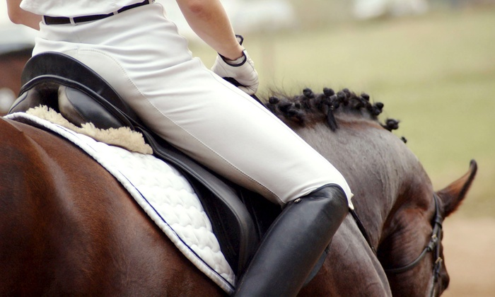 Taylor River Farm - Hampton Falls: One, Three, or Five 60-Minute Private Horseback-Riding Lessons at Taylor River Farm (Up to 75% Off)