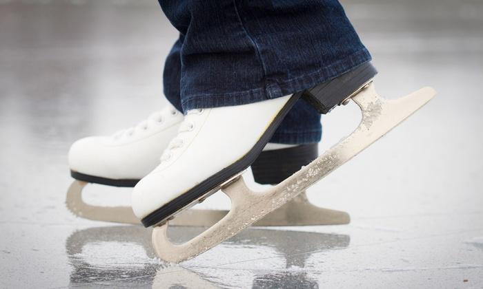 Novi Ice Arena - Novi: Four- or Five-Week Beginner Ice Skating Classes at Novi Ice Arena (50% Off)