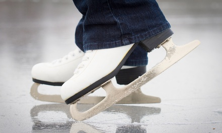Four- or Five-Week Beginner Ice Skating Classes at Novi Ice Arena (50% Off)