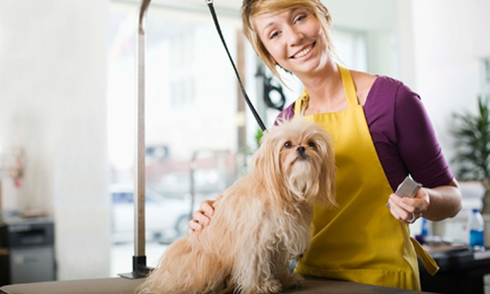 Happy Tails Dog Day Care - North Raleigh: Full Grooming Package for a Small, Medium, Large, or Giant Dog at Happy Tails Dog Day Care (Up to 52% Off)